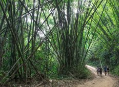 Laos to Northern Thailand: Treks & Trails