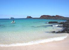 Treasures of Galapagos: Western & Central Islands (Grand Queen Beatriz)