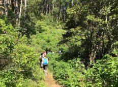 Sri Lanka: Hike, Bike & Kayak