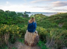 New Zealand North Island: Hike, Bike & Canyon