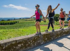 Walk the Camino de Santiago — Plus