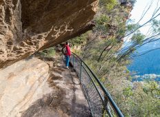 Blue Mountains & the Southern Highlands Adventure