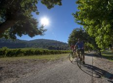Cycle the Victorian High Country - Beechworth to Bright