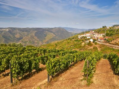 Portugal Retreat: Porto & the Douro Valley