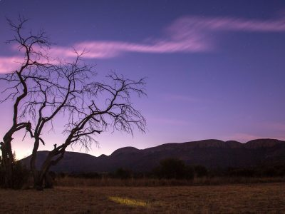 Cape Town and Kruger Upgraded Adventure
